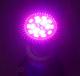 8W LED лампа за оранжерия